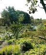 Skovhaven på Svanholm Gods. Foto: permakultur.dk